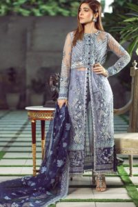 Heavy Butterfly Net Pakistani Salwar Suit