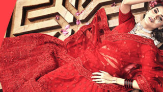 Lehenga Choli Online Shopping Store India